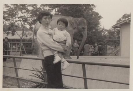 寄せられた写真の一枚 1955(昭和30)年撮影
