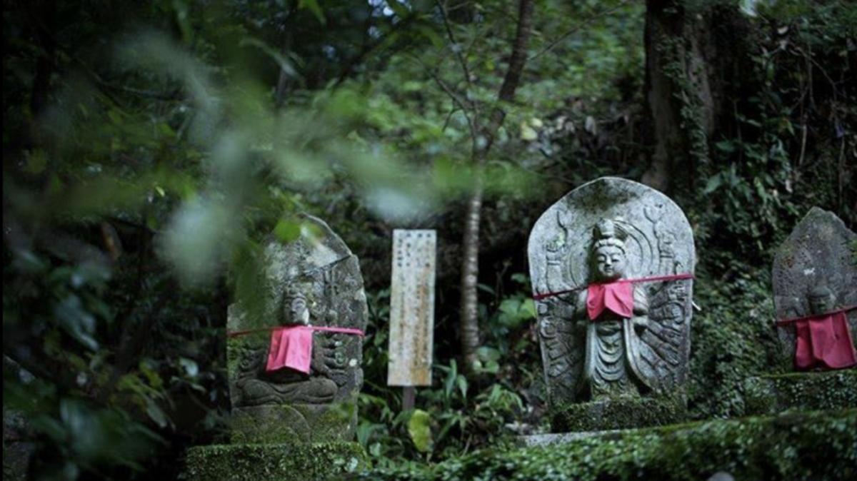 あったかフォトグラファーわか・豊島和賀子さん撮影、四国遍路や各地域の寺院を巡る神仏写真展を開催