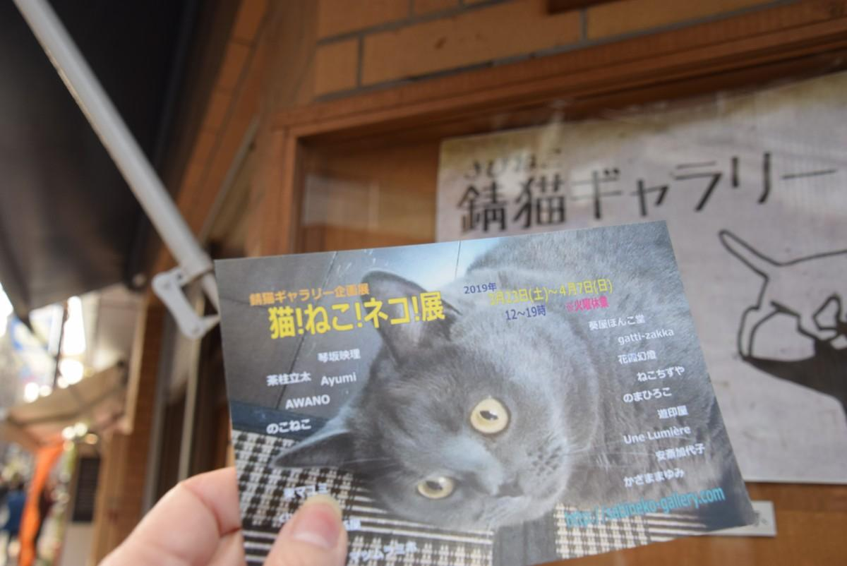 3月23日から始まる「猫!ねこ!ネコ!展」 のポストカード。