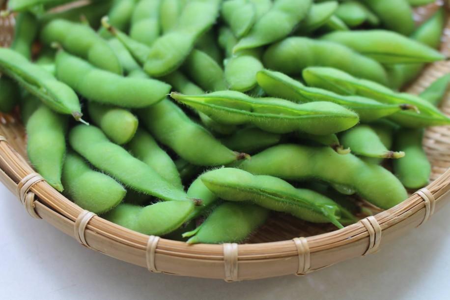 小平市の隠れた特産品となっている枝豆
