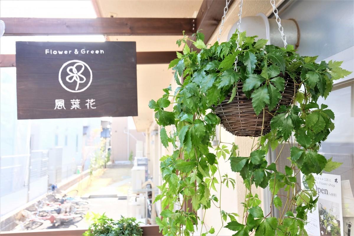 4月5日ひばりテラス118にオープンする小さな生花店「Fu-yo-ka風葉花」