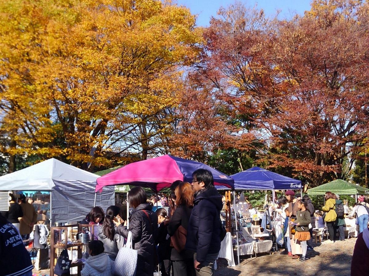 昨年11月開催時の様子。晴天に恵まれ紅葉も見られた