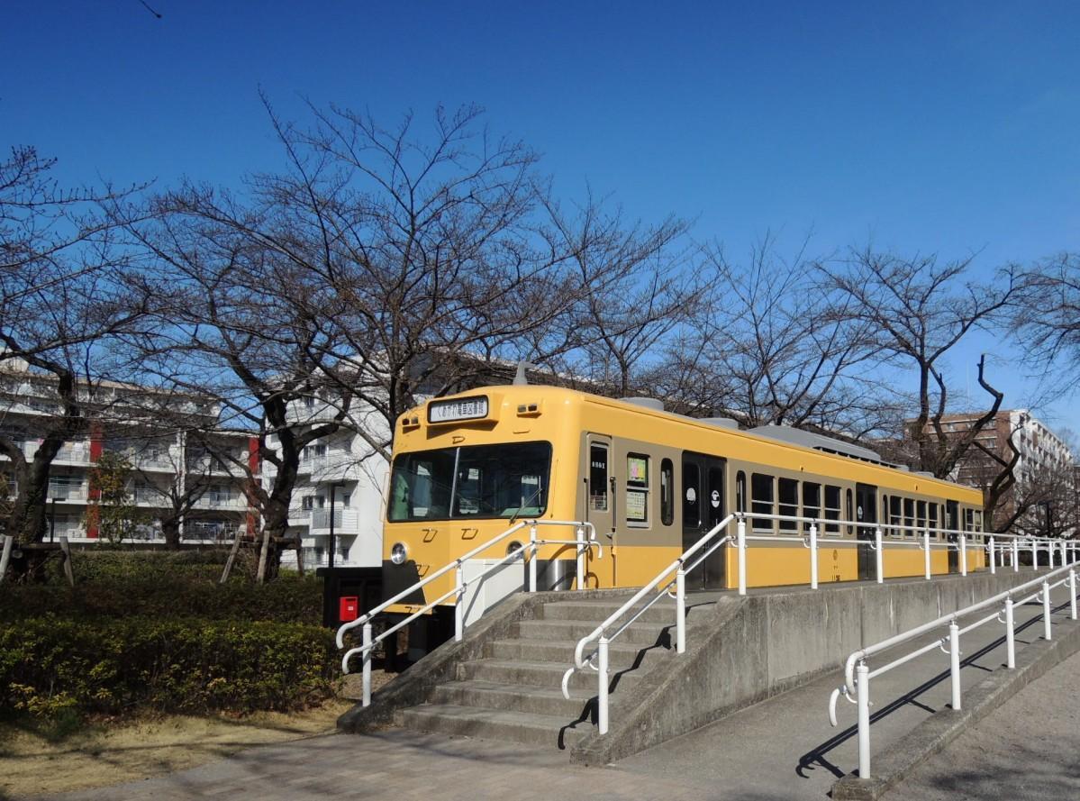 ツートンに塗り替えた「くめがわ電車図書館」(3月18日撮影)。周囲には桜並木が広がる