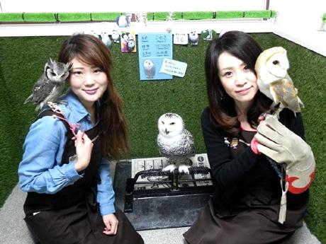 フクロウカフェ「BiBi&GeorGe(ビビ&ジョージ)」店長の近野真子さん(右)