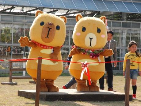 「神戸どうぶつ王国」のゆるキャラでカピバラの新婚夫妻「カピィ&バーバラ」