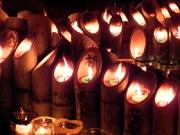 神戸で阪神淡路大震災追悼イベント 竹灯籠に「平和」「夢」などのメッセージ