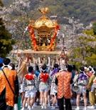 神戸・生田神社周辺で春の「生田まつり」 みこし担ぎ手募集も
