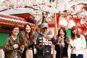 神戸でフクロウが花見 フクロウカフェ初の慰安旅行で