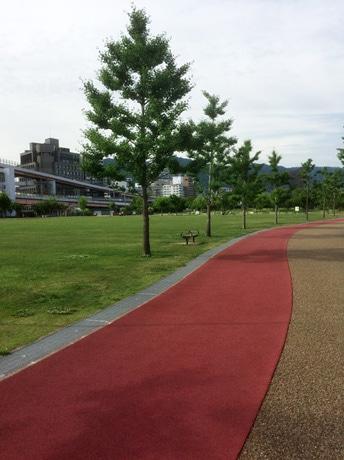 会場となる「みなとのもり公園(震災復興記念公園)」ジョギングコース