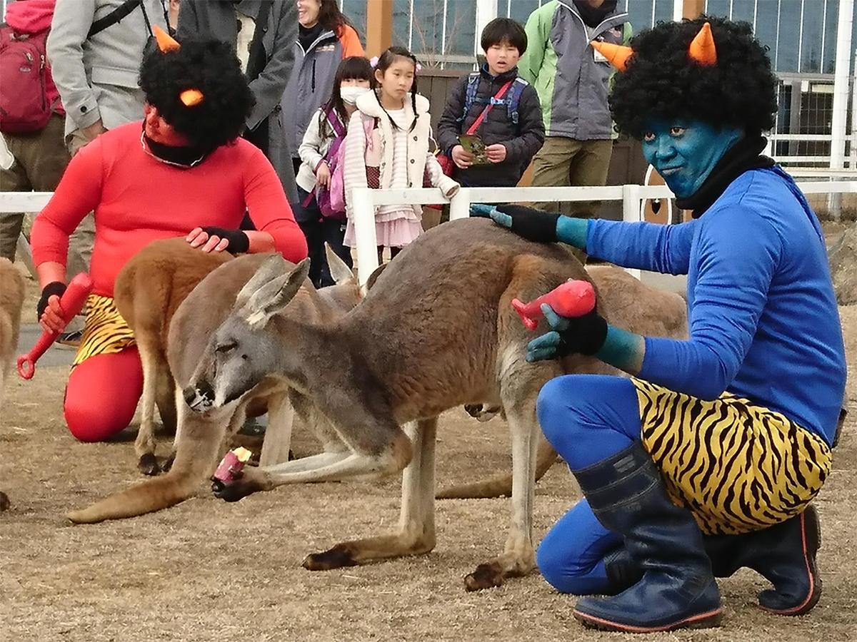 神戸どうぶつ王国の節分イベントに動物と仲良くなりたい赤鬼と青鬼も初来園