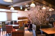 三宮のイタリア料理店で花見気分味わうイベント 店内に桜の木も