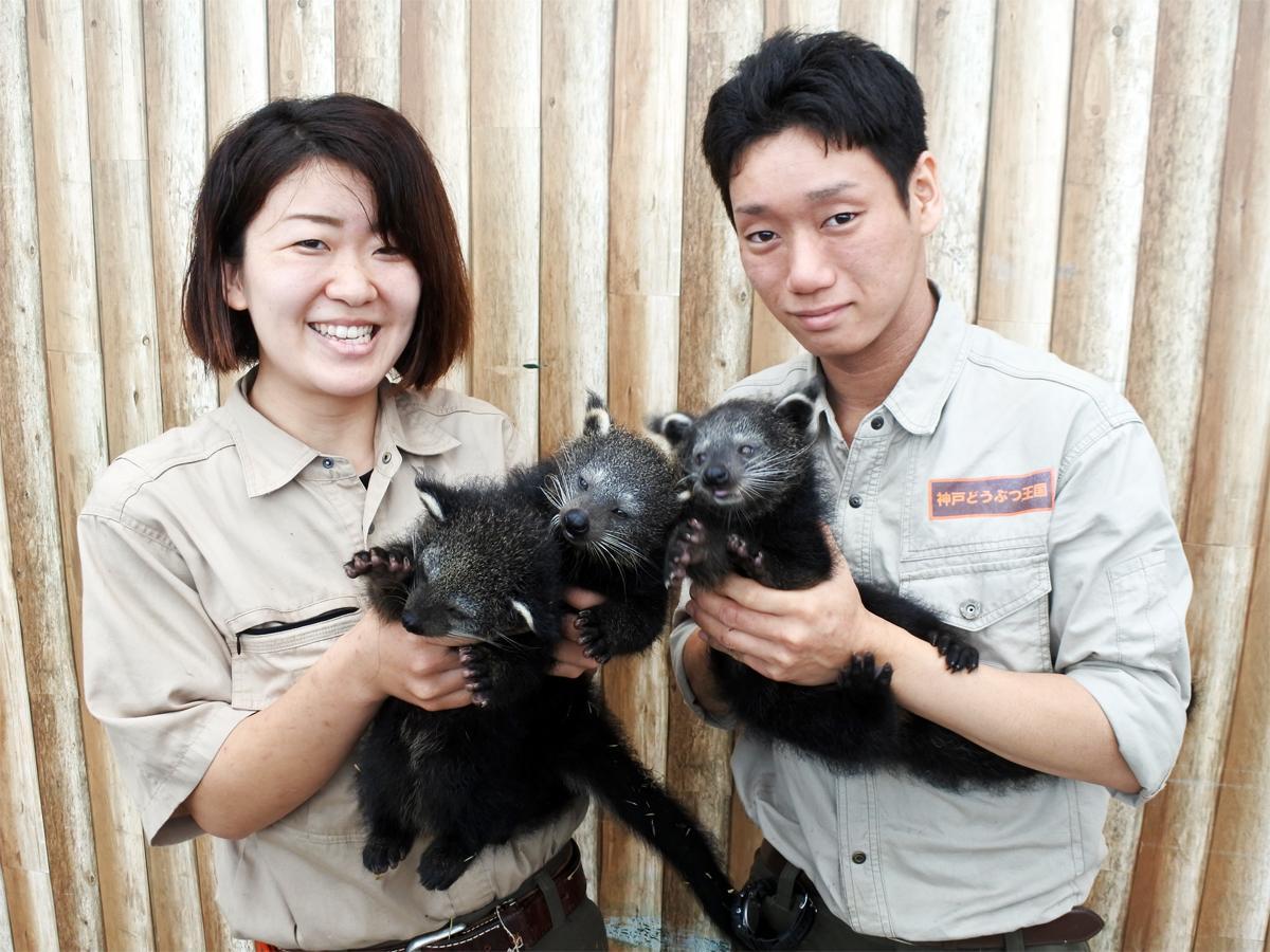 4月6日に誕生したビントロングの3つ子を抱く飼育スタッフの馬場瑞季さん(左)