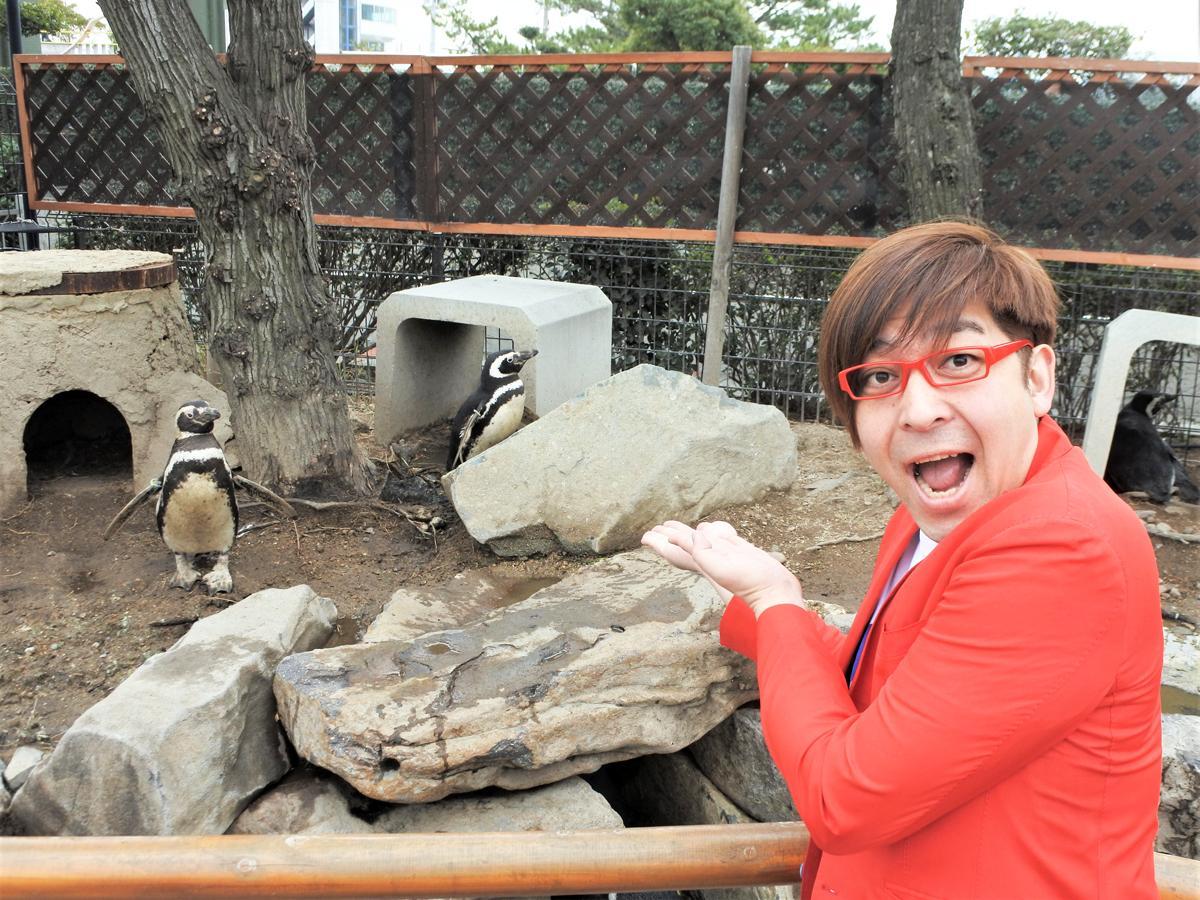 「神戸ストラット2020 in スマスイ~ありがとう この街に響け~」メイン会場として予定していた広場横「ペンギン館」のペンギンたちと実行委員長のクマガイタツロウさん(ワタナベフラワー)
