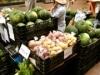 元町一番街で「水曜市」-地産地消目指し県内産野菜など発売