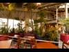 神戸に「トゥーストゥース」新店 「植物園のようなレストラン」に