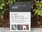 高知の生花店が手掛ける空間コーディネート、話題に 本出版をきっかけに
