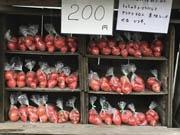 高知の「トマトだらけの良心市」が売上増 他県から訪れる買い物客も