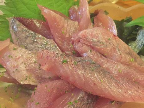 高知で旬魚の祭典「メジカ・新子祭り」 ウツボの蒲焼きや鍋焼きラーメンブースも
