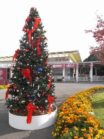 4.5メートルのクリスマスツリーも登場
