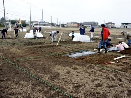 埼玉県川越市で運営している市民農園