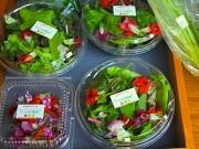 新横のオフィス街でマルシェ-新横浜LED菜園の野菜直売