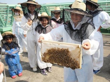 国学院大学の養蜂プロジェクトなど地域の活動を紹介