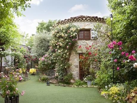 バラの咲く庭園