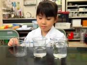 ハウスクエア横浜で幼児から大人まで楽しめる親子向け科学実験イベント