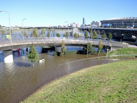 浸水した新横浜公園