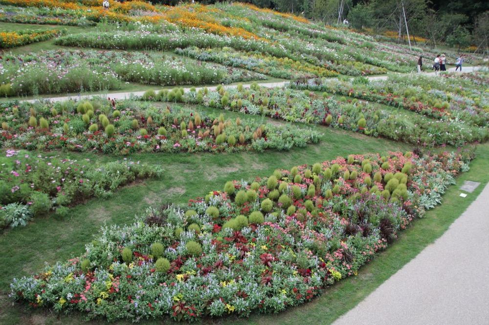 昨年秋の大花壇