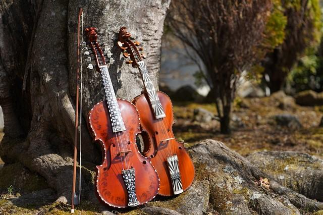 バイオリンに似た形の楽器