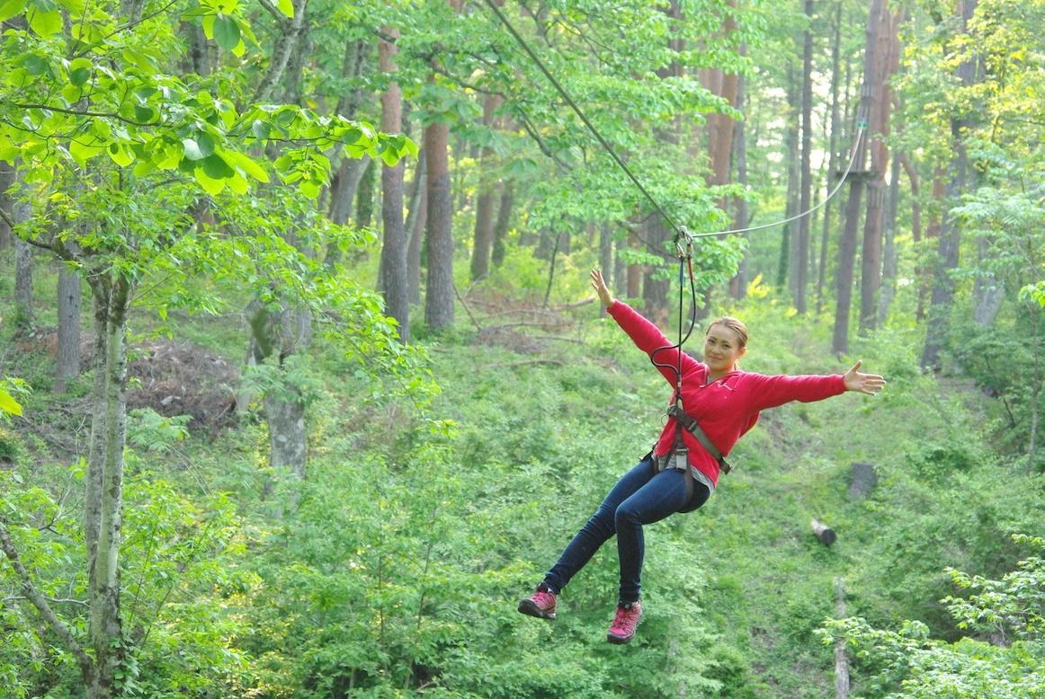 ケーブルを使って木々の間を移動する
