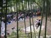 鴨居市民の森でサーカス公演 パントマイム体験や竹の楽器作りも