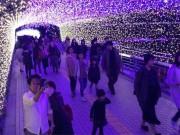 小倉の繁華街でイルミネーション点灯 「河内藤園」の藤棚イメージ