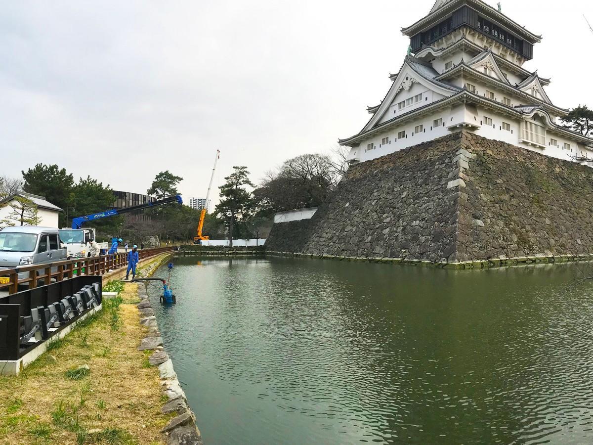 水位が下がり始めた小倉城天守閣の下のお堀