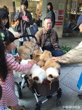 小倉経済新聞【関連画像】立ち止まるとあっという間に人だかりができる