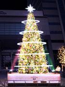 木場「深川ギャザリア」でイルミネーション 区内最大級30万球のLED点灯