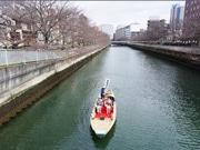 深川で「お江戸深川さくらまつり」始まる 大横川の桜、和船で