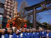 門前仲町エリア、東京マラソンで盛況 富岡八幡宮では神輿で応援