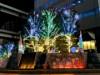 木場「深川ギャザリア」でイルミネーション点灯へ 光のテーマパーク演出