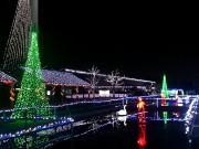 行田で古代蓮の里イルミネーション 展望タワーからの夜景観覧企画も
