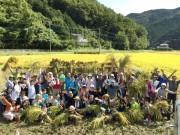 小川町で「無農薬で米作りから酒造りを楽しむ会」 手すきラベル作りも