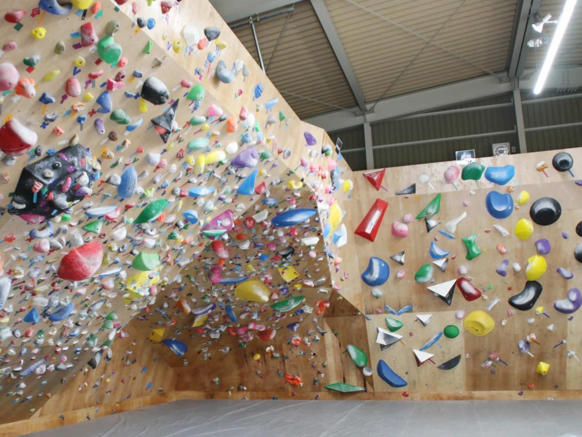 壁は初心者から本格的なクライマーまで幅広く用意されている