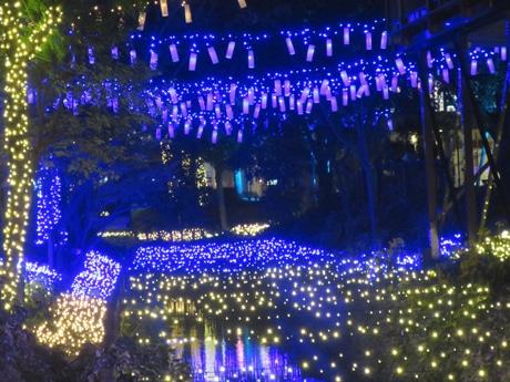 LED5万球による「くらしき きらめきのみち」