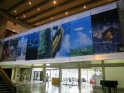 倉敷市立美術館でアニメ美術監督・山本二三さん作品展 「ラピュタ」背景画など