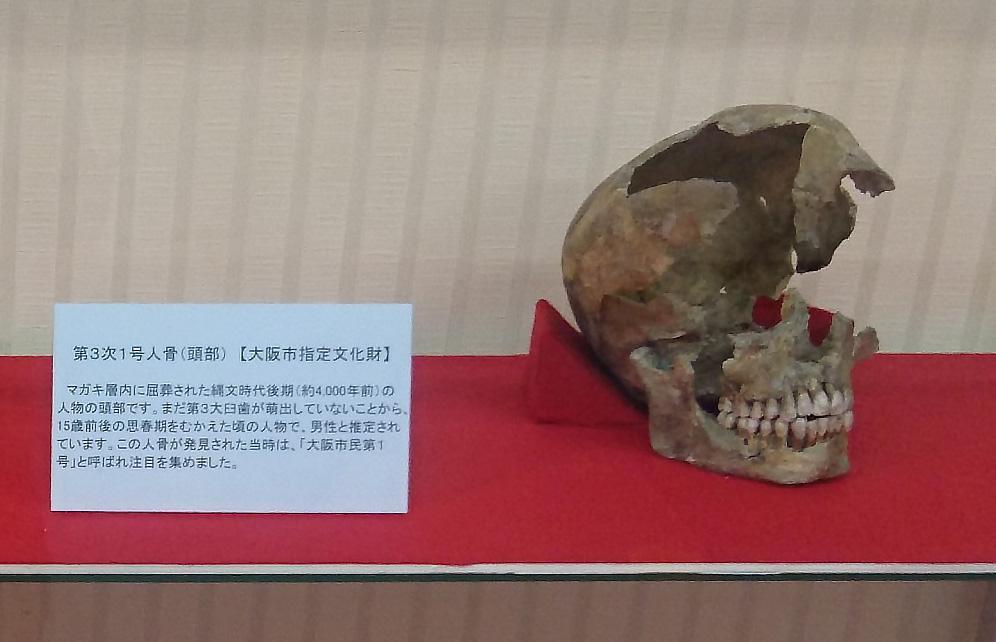 大阪市指定文化財「第3次1号人骨」