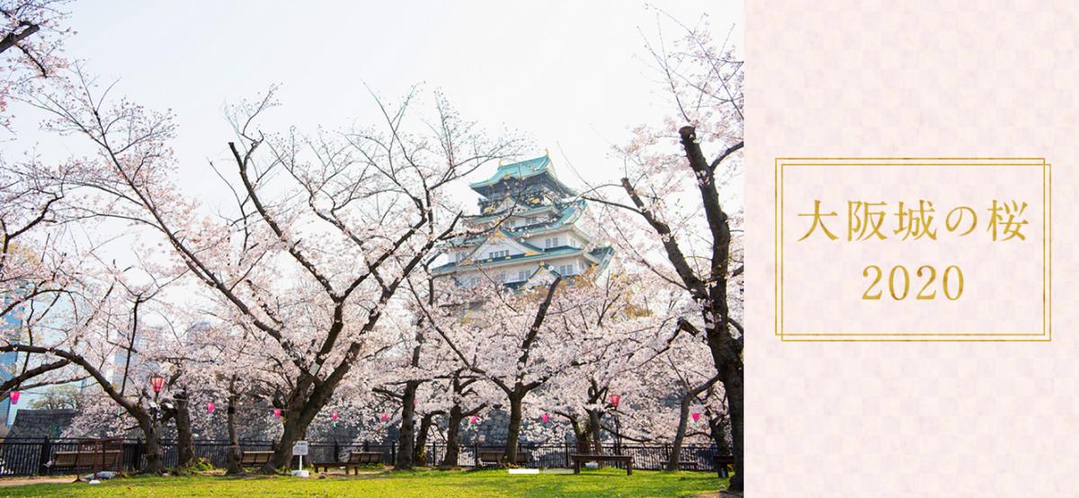 大阪城公園ホームページ「大阪城の桜2020」より