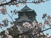 大阪城天守閣、年間入館者数255万人超え 「真田丸」効果で過去最高