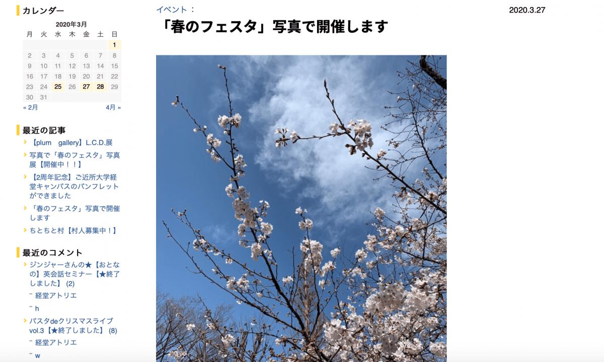 オンラインイベント「春のフェスタ」にアップされた桜の写真