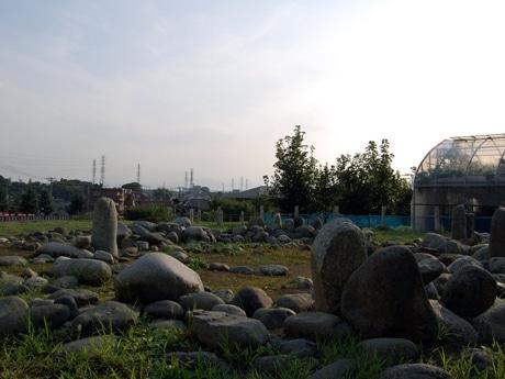 田端環状積石遺構の様子。遺構の劣化を防止するため実物を埋め戻し、直上に外部材により復元されたレプリカが展示されている。